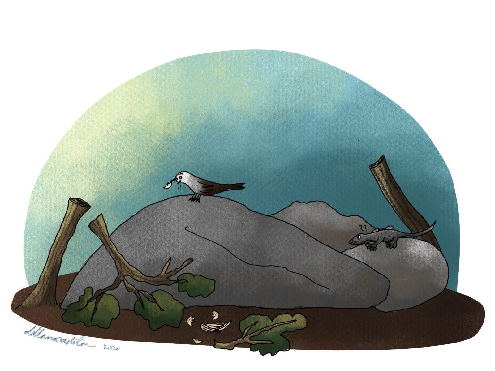 Ceki si Cicak karya Della Naradika